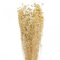 Vlas gebleekt droog flora droog gras 100g