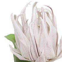 Schuimbloesem wit, paars 12cm L30cm 1p