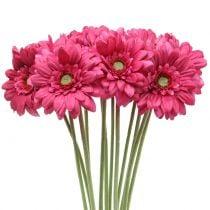Gerbera Roze 48cm 12st