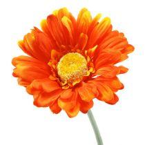 Gerbera Oranje Ø10cm L55cm 6st