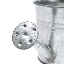 Gieter Ø5.5cm H6cm 12st glanzend zink