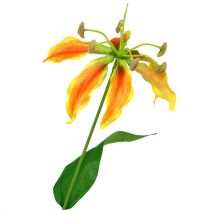 Gloriosa-tak oranjegeel 90cm 1p