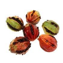 Herfstvruchten 3,5 cm rood, bruin 24st