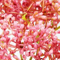 Vlierbloesemtak roze 54,5cm 4st