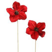 Houtbloesem als plug rood Ø9cm - 12cm L45cm 15st