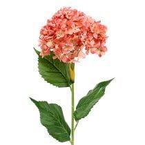 Hortensia roze 80cm 1p