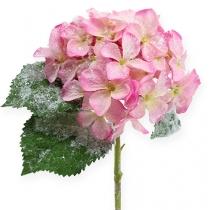 Hortensia roze met sneeuw effect 25cm