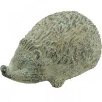 Sierfiguur egel 22cm tuindecoratie herfst antiek groen 20 × 12 × H10cm