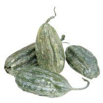 Loofah fruit groen 14cm 10st