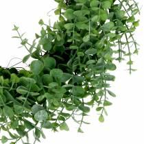 Krans eucalyptus groen Ø36cm