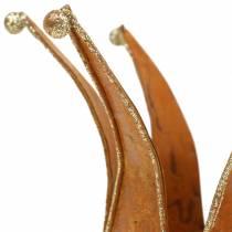 Crown roest Gold Ø6.5 / 8.5cm 2 stuks in een set