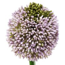 Kunstbloemen Allium Paars Ø10cm L65cm