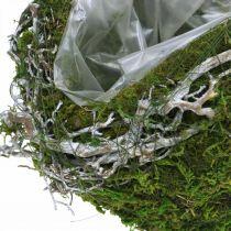 Grafdecoratie bal ranken mosgroen, white wash Ø20cm