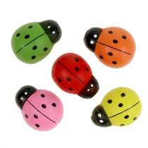 Lieveheersbeestjes gekleurd 2,5 cm 60 st
