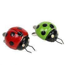 Lieveheersbeestje met clip 4,5cm rood, groen 6st
