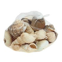 Maritieme decoratie schelpenmix naturel 400g