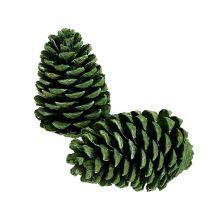 Maritima kegels 10cm - 16cm groen mat 12st