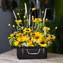 Metalen koffer, plantenbak, koffer voor beplanting L30 / 22,5cm, set van 2