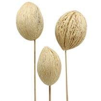 Mintolla bal gebleekt 8cm - 10cm L46cm 6st