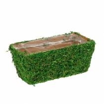 Planter mosgroen 20 × 10cm H9cm