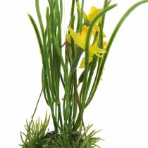 Narcis in de eierschaal om op te hangen Kunstgeel 25cm