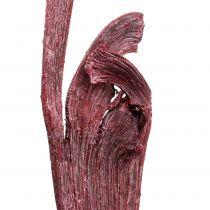 Natraj Geweiholz Mix Rood, wit gewassen 10st