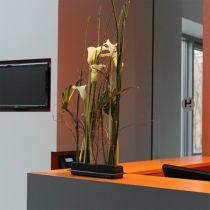 OASIS® Black Table Deco Medi steekschuim 4st