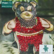 Steekschuim figuur Teddy met standaard 48,5 cm x 42 cm H5 cm 1 st