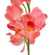 Orchidee Mokara zalm 50cm 6st