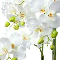 Orchidee wit met wereldbol 110cm