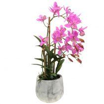 Orchidee in een pot paars H55cm