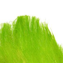 Palmvezels pastel lichtgroen 400gr