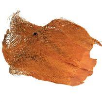Palmvezel naturel 1kg