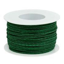 Papierkoord omwikkeld Ø2mm 100m groen