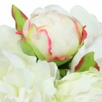 Pioen bos wit / roze 27cm 6st