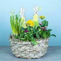 Plantenbak van hooi, decoratieve mand, plantenmand, ovale bloemenmand, set van 3