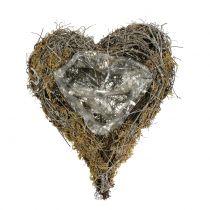 Plantenhart gemaakt van wijnstokken en natuurlijk mos 20 cm x 14 cm