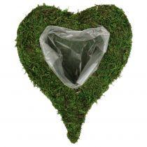 Plant hart mos 28cm x 23cm