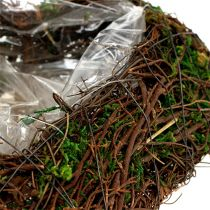 Plant hart wijnstok, mos 22cm x 25cm H7cm