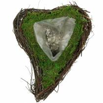 Plant hart wijnstok, mos 26cm x 36m H9cm