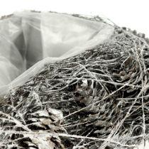 Plantenhart gemaakt van kegels 17cm x21cm wit 2st