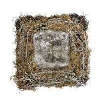 Plantkussen gemaakt van wijnstokken en mos 20cm x 20cm