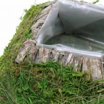 Plantkussen mos, schors 20cm × 20cm