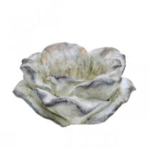 Rozenbloesem voor opplant, rouwbloemen, steenroos, betondecoratie grijs, abrikoos, violet Ø11cm L22cm H9cm