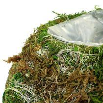 Plantenschaal moskom Ø18cm 2st