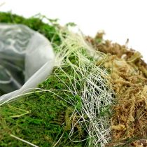 Plantenbak gemaakt van mos Ø28cm