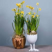 Plantenpot Eierschaal met poten Wit Ø13cm H21cm