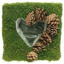 Plantenkussen hart mos en kegels vierkant 25×25cm