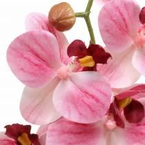 Orchidee kunsttak Phaelaenopsis roze H49cm
