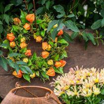 Physalis kunstkrans oranje, groen Ø28cm herfstdecoratie